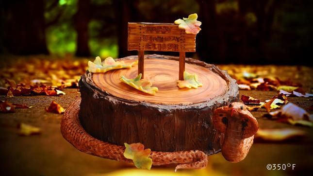 A tree stump / tree bark birthday cake for a snake lover
