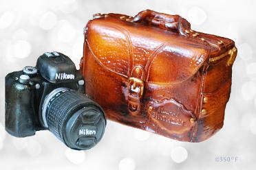 A Camera and leather bag sculpted cake for a photography enthusiast's birthday
