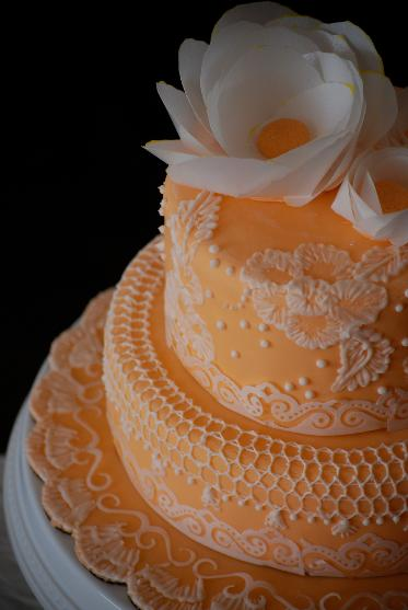 A peach two tiered wedding cake with lace work and white flowers